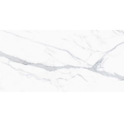 PORTO VENATO 24X48 POLISHED